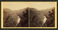 Pine forrest (sic), Summit Station, Catawissa R.R, by Moran, John, 1831-1903.png