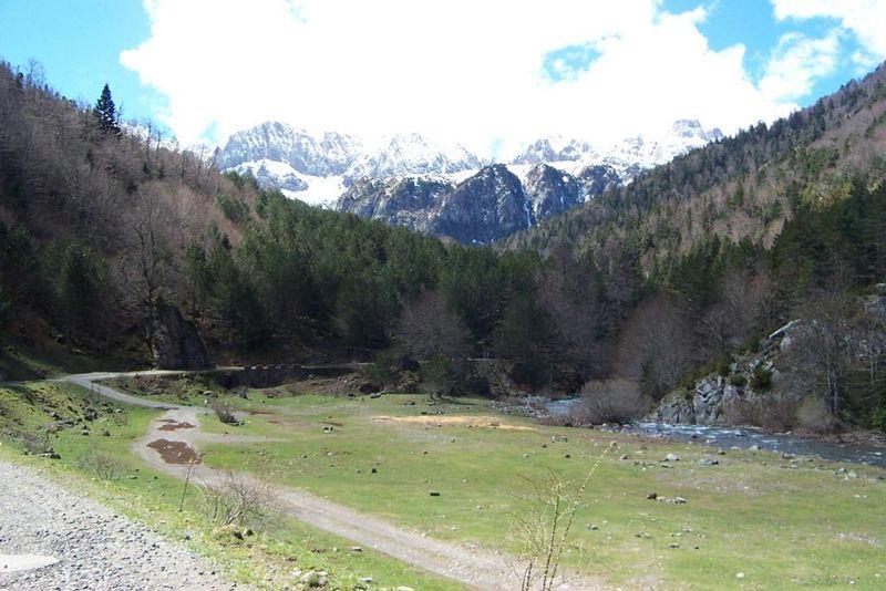 File:Pirineo Selva de Oza 2.jpg