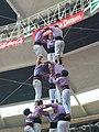 Plaça de Braus de Tarragona - Concurs 2012 P1410226.jpg