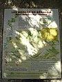Plan entrée des Gorges du Régalon.jpg