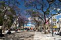 Plaza Miserere at Springtime (5184910265).jpg