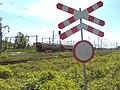 Podwójny znak św. Andrzeja na bocznicy Kobylepole Poznań Franowo - maj 2018.jpg