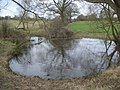 Pond near Earl's Croome - geograph.org.uk - 765657.jpg