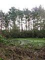 Pond on woodland edge - geograph.org.uk - 1132704.jpg