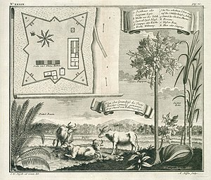 Invasion of Java (1811) - Diagram of Fort Cornelis, Batavia.