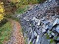 Povltavská stezka, odřez v suťovém poli (01).jpg