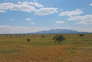 Cienega Valley (Arizona) - Prairie with the Santa Rita Mountains in the background.