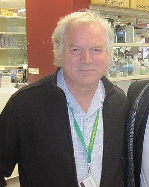 Michael Houghton (virologist) - Image: Prof Michael Houghton