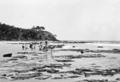 Queensland State Archives 1125 Alexander Headland looking North December 1930.png