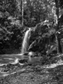 Queensland State Archives 1275 Vision Falls near Lake Eacham c 1935.png