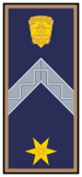 Rank Police Hungary WO-1.svg
