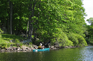 Recreational kayak Light boat that is paddled
