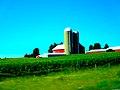 Reese Dairy Farm - panoramio.jpg