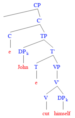 "Example reflexive structure. Since ""himself"" is immediately dominated by ""John"", Principle A is satisfied. Reflexive.png"