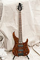 Regenerate Malibu series 5 string bass (burl camphor).jpg