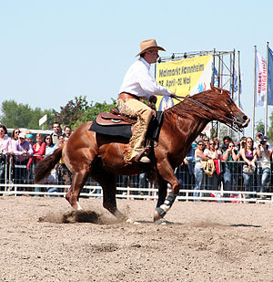 Reining - The spin is one of the most difficult and crowd-pleasing maneuvers.