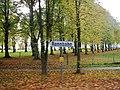 Rennbahn an der nostalgischen Dampfeisenbahn Molli zwischen Kühlungsborn und Bad Doberan - panoramio.jpg