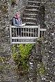 Restormel Castle (42064593232).jpg