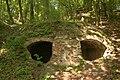 Rezerwat Wąwóz Szaniawskiego ruiny 03.05.09 p.jpg