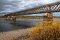 Rheinbrücke Urmitz - Gesamtansicht.jpg