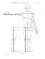 Richer - Anatomie artistique, 2 p. 146.png