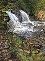 Ricketts Glen State Park Mohawk Falls 2.jpg