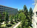 Rieber Court UCLA.jpg