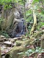 RincónWaterfall Apr2003.jpg