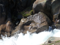 Rio Manzanares en La Pedriza 01.png