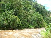 Rio Pacuare Costa Rica 002.JPG