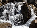 Rishikesh harikempty fallsdwar (392).JPG