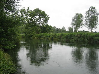 River Avon, Hampshire - A view of the River Avon in Hampshire near Fordingbridge.