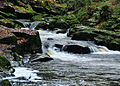 River Erme above Ivybridge 3.jpg