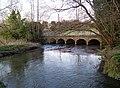 River Nadder, Burcombe - geograph.org.uk - 757579.jpg