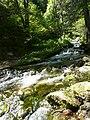 River Pelister.jpg