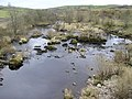 River Ribble at Helwith Bridge - geograph.org.uk - 1806316.jpg