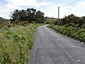 Road at Tullymore Hill - geograph.org.uk - 1329295.jpg