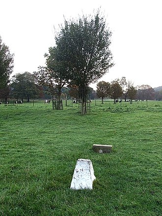 Box Moor Trust - The grave of Robert Snooks. The white headstone was installed in 1904, whilst the footstone was laid in 1994.The Trust's Belted Galloways can be seen in the background.
