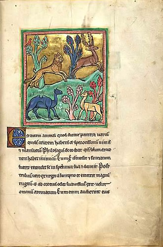 "Glossary of literary terms - ""The Leopard"" from the 13th-century Rochester Bestiary."