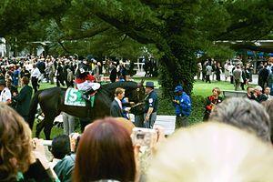 Rock Hard Ten - Rock Hard Ten at 2004 Belmont Stakes
