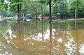 Roman Forest Flood Waters - 4-19-16 (26523218835).jpg