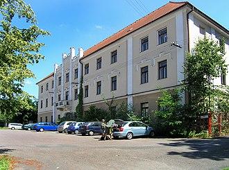 Ronov nad Doubravou - Image: Ronov nad Doubravou, castle
