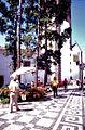Rua do Aljube, Funchal, Madeira - 1990.jpg