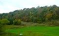 Rual Richland County - panoramio.jpg