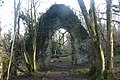 Ruined Chapel in the Wood (46625036532).jpg