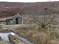 Ruined shepherd's hut - geograph.org.uk - 1754401.jpg