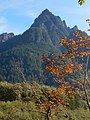 Russian Butte seen from Middle Fork Snoqualmie River Road. Washington state.jpg