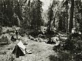 Russian Jack Springs picnic area.jpg