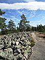Sammallahdenmäki-Suomi.JPG