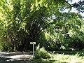 San Juan Botanical Garden - DSC06995.JPG
